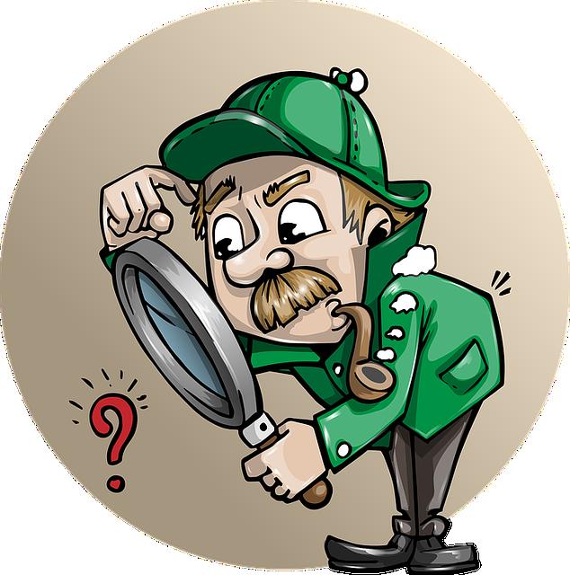Internal Audit Plan Questions